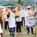 Bupati Terima Bantuan Hewan Qurban Dari Bakrie Amanah Pada Acara Qurban Untuk Negeri di Desa Nasol