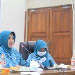 Peduli Dampak Covid-19, TP PKK Kabupaten Ciamis Sosialisasikan AKB/New Normal kepada Istri Camat se- Kabupaten Ciamis