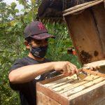 Tingkatkan Bisnis Perlebahan, Pemerintah Provinsi Jawa Barat Sosialisasikan Teknologi SAMS.